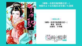 春駒~吉原花魁残酷日記~